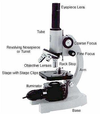 bagian mikroskop